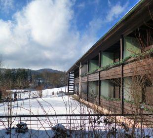 Gästegarten Pension Haus Hochstein