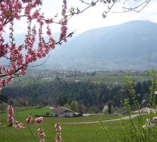 Ausblicke vom Waalweg oberhalb vom Zirmerhof Hotel Zirmerhof