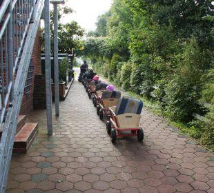 Bollerwagenfahrt Ferienhaus Wattkuckuck