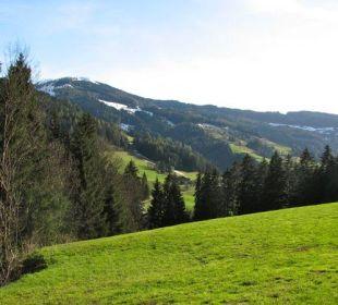 Alpine view Wörglerhof Alpbacher Hüttenappartements & Saunaalm