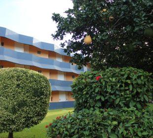 Hotel Calli von außen