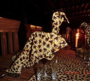 Tiere aus der Servette Octagon Safari Lodge