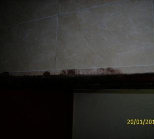Überall schwarzer Schimmel Hotel Pueblo Caribe