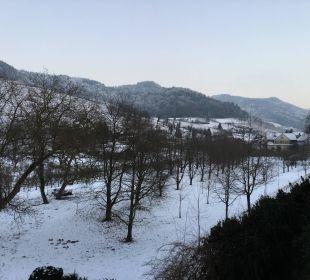 Blick auf den winterlichen Schwarzwald Faxe Schwarzwälder Hof Waldulm