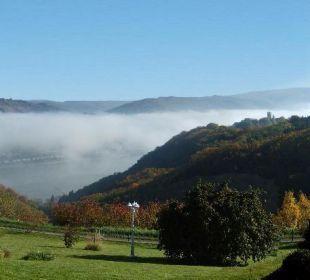 Ausblick über Mittelrheintal und Taunus Ferienwohnung Schau Rhein