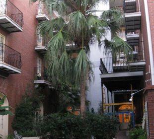 Palmen und Pool