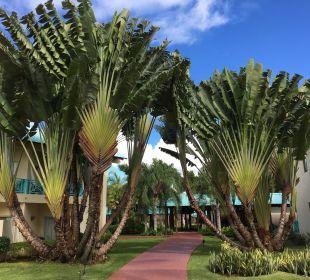 Außenansicht Dreams La Romana Resort & Spa