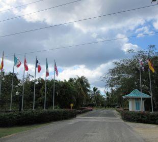 Auffahrt zum Hotel Dreams La Romana Resort & Spa