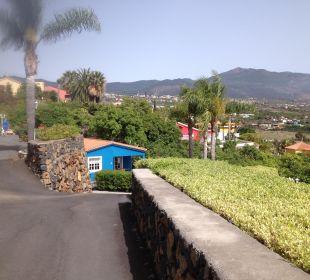 Blick auf Anlage Villen Los Lomos