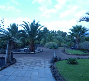Botanischer Garten des Tigaiga Hotel Tigaiga