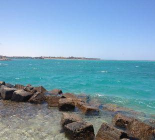 Ausblick von der Insel