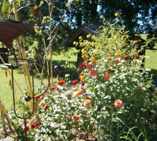 Gutes vom Biogarten Biobauernhof Harassen