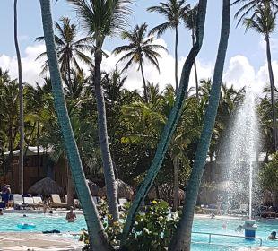 Pool Iberostar Bávaro Suites