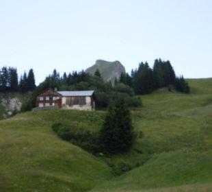 Umgebung Hotel Alpenblume