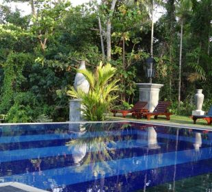 Pool mit Sicht auf tropischen Garten Amal Villa