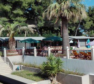 Pool Hotel Amari