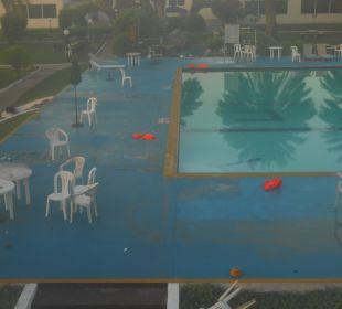Pool Hotel Flamingo Beach Resort