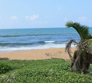 Strand direkt vor unserer Tür Hotel Ranweli Holiday Village