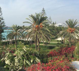 Ausblick Hotel Nissi Beach Resort