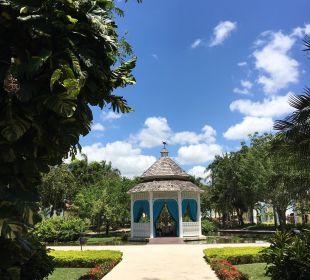 Blick zur Teichanlage IBEROSTAR Hotel Hacienda Dominicus