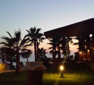 Abends an der Bar traumhafter Ausblick  Hotel Horus Paradise Luxury Club