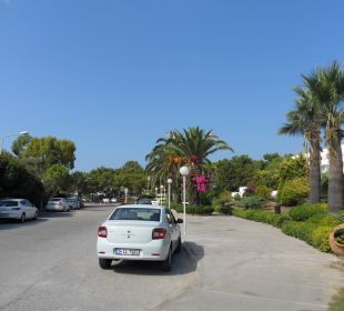 Weg zum Hotel Altin Yunus Resort & Thermal Hotel