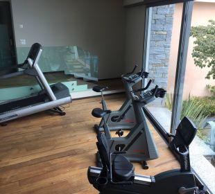 Fitness Villa Orselina Boutique Hotel