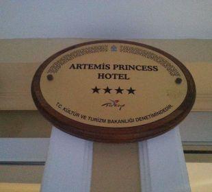 Rzy wejściu Hotel Artemis Princess