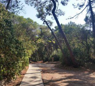 Weg zum Strand Park Hotel Marinetta
