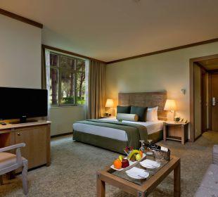 Junior Suite Gloria Verde Resort