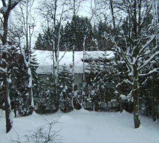 Ausblick von unserem Zimmer Hotel Pfeiffermühle