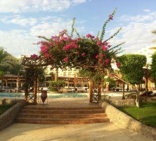Красота  Festival Le Jardin Resort (geschlossen)