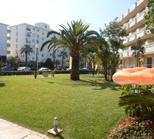 Vor dem Hotel Hotel JS Alcudi Mar