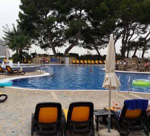 Pool mit Liegen u. kleiner Grünfläche Olimarotel Gran Camp de Mar