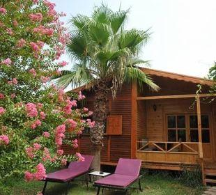 Holtz Bungalows im Garten Hotel Anatolia Resort