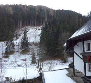Blick vom Balkon Hotel Trattlerhof