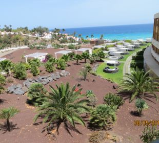 Gartenanlage IBEROSTAR Playa Gaviotas