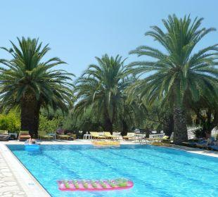 Palmen am Pool Hotel Paradise Corfu