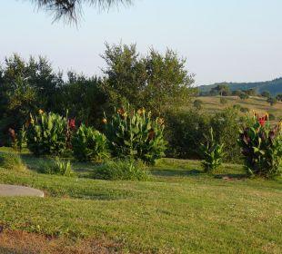 Garten Casa Montecucco
