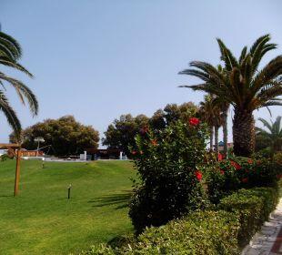 Palmen und Blumen am unteren Pool AKS Annabelle Beach Resort