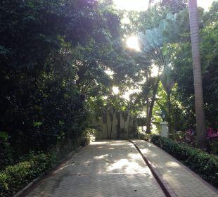 Weg zum Zimmer durch den Dschungel Luxury Bahia Principe Cayo Levantado Don Pablo Collection