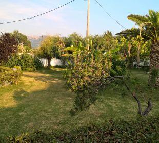 Garten zwischen Apartment und Strand Hotel Robolla Beach