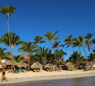 Blick vom Wasser auf den Strand VIK Hotel Cayena Beach Club