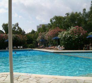 Ein schöner sauberer Pool Hotel Livadi Nafsika