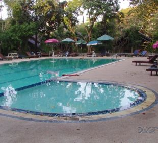 Pool am Bungalow Hotel Pattaya Garden