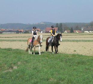 Ausritt Bauernhof Dorfhof Bauer