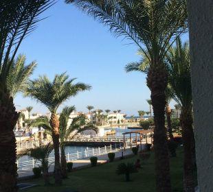 Blick aus dem Zimmer  Dana Beach Resort