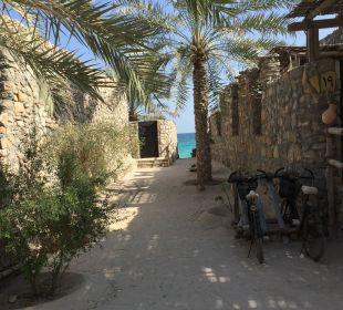 Blick zum Strand Six Senses Spa At Zighy Bay