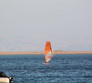 Der Surfer und das Meer Jaz Dahabeya