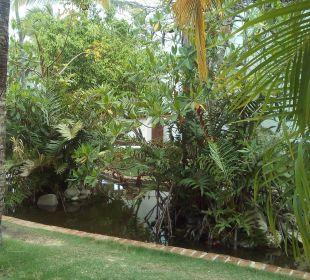 Top angelegter Garten Occidental Punta Cana